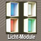 Lichtmodule